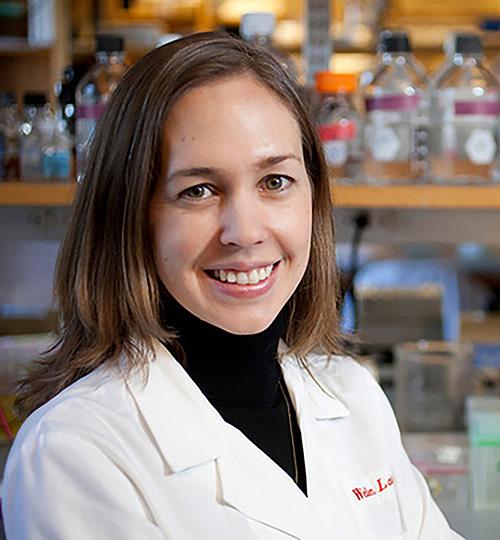 Kathryn E. Wellen, Ph.D.