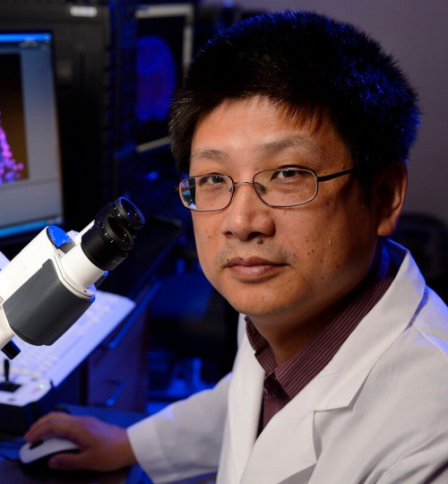 Hongjun Song, Ph.D.