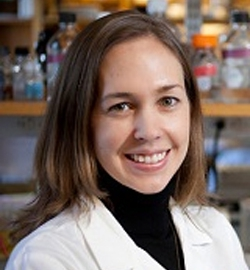 Katheryn Wellen, Ph.D.