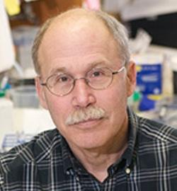 Steve Liebhaber, M.D.