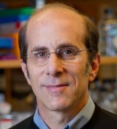 Kenneth S. Zaret – Ph.D.