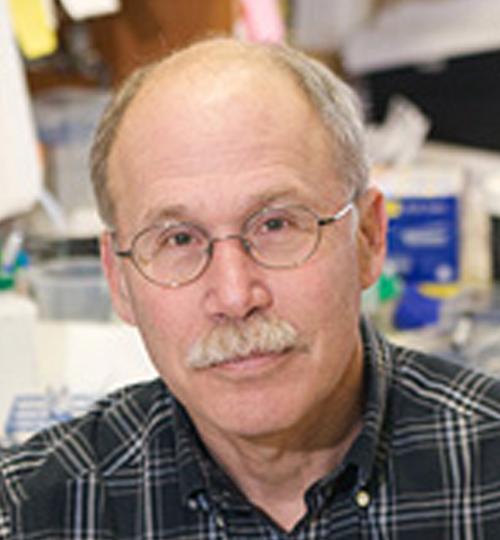 Stephen Liebhaber, M.D.